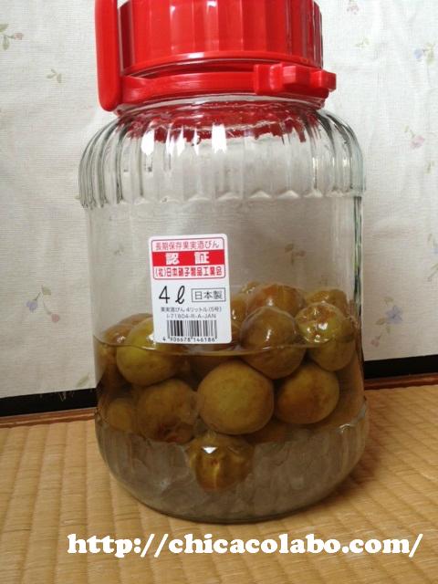 梅シロップ作り4日目