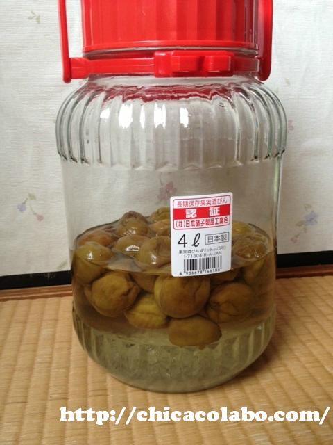 梅シロップ作り9日目