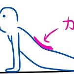 ぎっくり腰に3回なった私の体験談・治し方・ストレッチ法まとめ