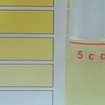 冬の水道水の塩素量と太陽光でのカルキ抜きにかかる日数を調べた