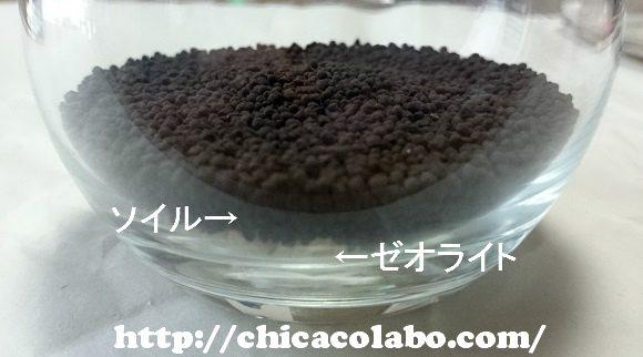 cup-soil-sm