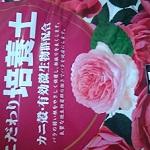 一目惚れしたバラの苗を育てることに。土や鉢など買ったのでまとめる
