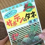 サボテンを種から育てる実験を開始。種まきに使う土とか撒き方とか