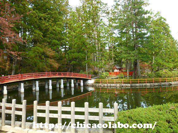 伽藍近くにある池