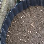 あぜ板を使ってコンクリの上に家庭菜園用の格安ミニ畑を作ってみた